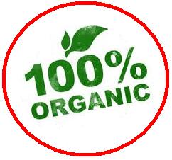 Katarda-organik-gida